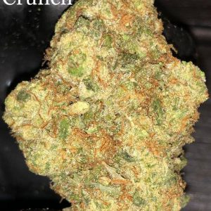 Captain Crunch Cannabis Strain